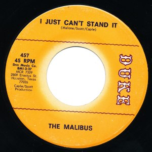 The Malibus - I Just Can't Stand It